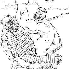 O duelo entre Hulk e o Abominável