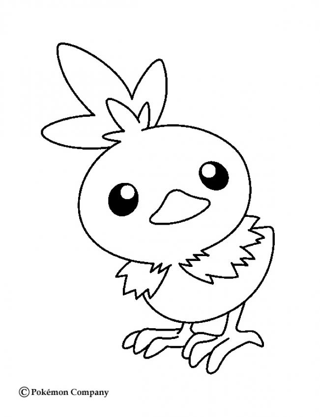 Desenhos para colorir de pequeno torchic for Treecko coloring pages