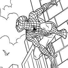 O Homem-Aranha escalando escalando muros