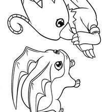 Desenho para colorir do Biyomon e do Tokomon