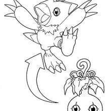 Desenho do digimon Biyomon com o Yokomon para colorir