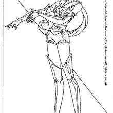 Sailor guerreira