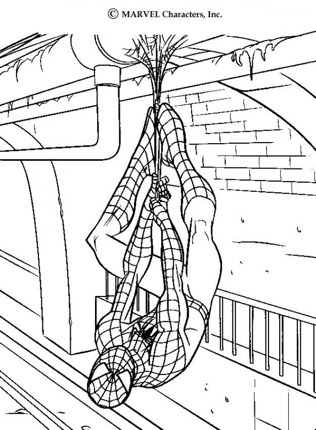 Desenhos Do Homem Aranha Para Colorir Desenhos Para Colorir