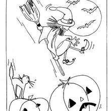Uma Bruxa no Halloween com sua vassoura