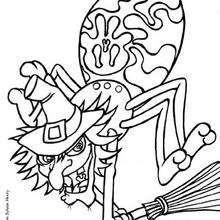 Desenho de uma Aranha do Halloween em uma vassoura para colorir