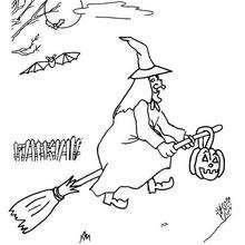 A bruxa em sua vassoura