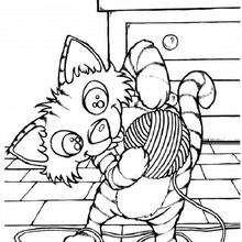 Gato com sua bola de lã
