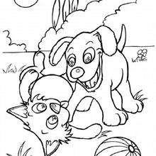 Desenhos Para Colorir De Cachorro E Gato Brincando Pt Hellokids Com