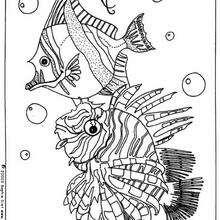 Desenho de peixes do fundo do mar para colorir