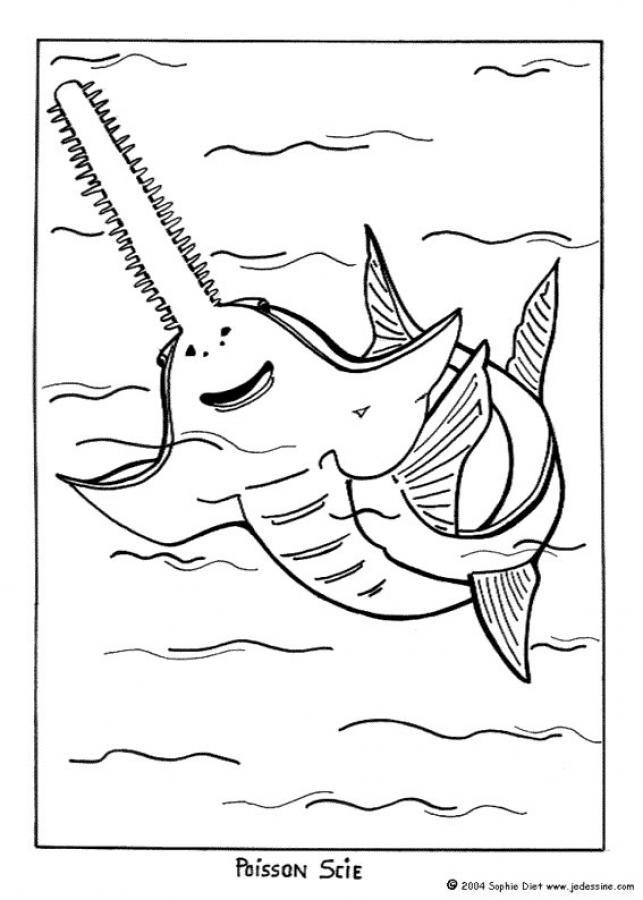 desenhos para colorir de desenho de um peixe serra para colorir pt