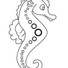 Desenho de um Cavalo-marinho para colorir