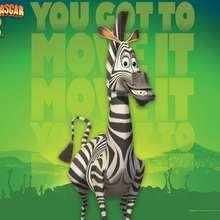 Papél de parede de Madagascar 2 : Marta, a zebra