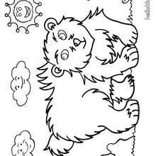 Um urso para pintar