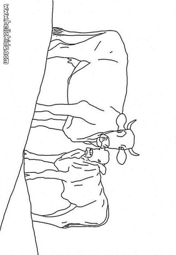 Desenho de um Bezerro com sua mãe vaca para colorir