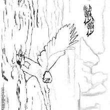 Desenho de uma Águia pescando para colorir