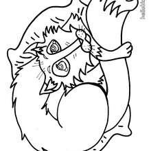 Desenhos Para Colorir De Desenho De Um Macaquinho Para Colorir Pt
