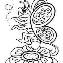 Desenho de uma borboleta sorrindo para colorir