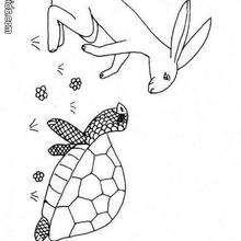 Desenho de uma Lebre e uma tartaruga para colorir