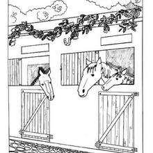 Desenho de Cavalos no estábulo para colorir