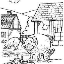 Desenho de uns porquinhos para colorir