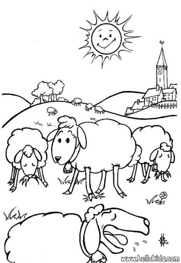 desenhos para colorir de desenho de uma ovelha para colorir pt