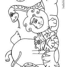 Desenho de animais selvagens para colorir
