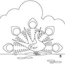 Desenho de um Pavão para colorir