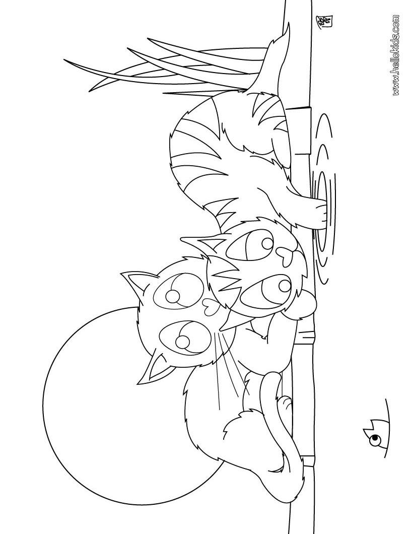Desenho de gatinhos brincando para colorir