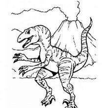 Desenho de um Alossauro e um volcão para colorir
