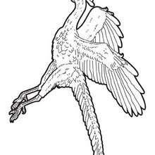 Desenho para colorir de um arqueópterix