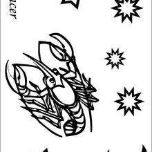 Câncer, o quinto signo do Zodíaco