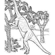 Desenho de um dinossauro comendo folhas para colorir