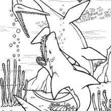 Desenho de um Dinossauro com um tubarão pré-histórico para colorir