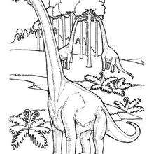 Desenho de Braquiossauros comendo para colorir