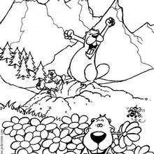 Desenho de uma Marmota para colorir