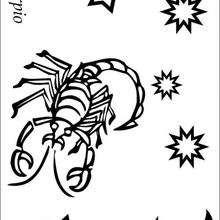 Desenhos Para Colorir De Escorpiao O Oitavo Signo Do Zodiaco Pt