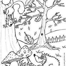 Desenho de um Esquilo com um ouriço para colorir