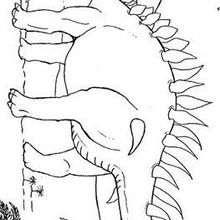 Desenho de um Estegossauro com palmeiras para colorir