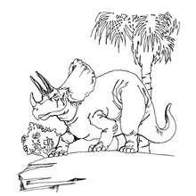 Desenho de um Tricerátopo para colorir online