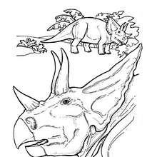 Desenho para colorir da cabeça de um Tricerátopo