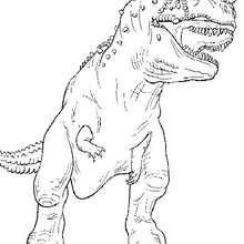 Desenho do Tiranossauro Rex para colorir