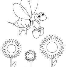 Desenho de uma Abelha engraçada para colorir