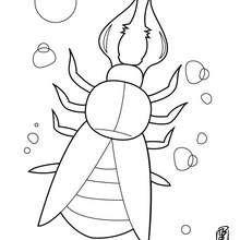 Desenho de um besouro estranho para colorir