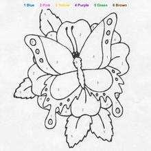 Colorindo a grande borboleta pelos números