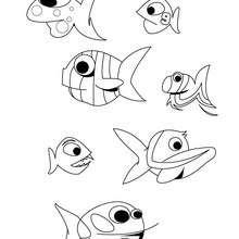 Desenho de peixes para colorir