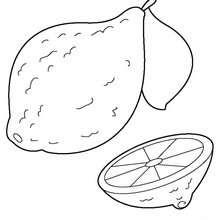 Desenho de um limão para colorir