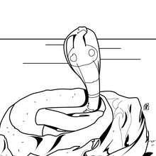 Desenho de uma naja venenosa para colorir online
