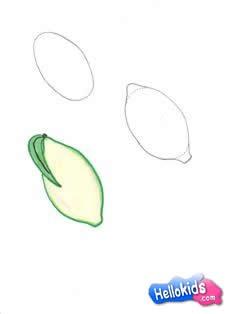 Como desenhar um Limão