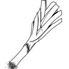 Desenho de um Alho-porro para colorir