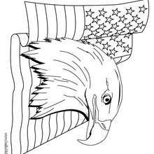 Desenho da Águia-de-cabeça-branca com a bandeira dos EUA para colorir